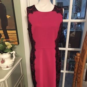 Gorgeous pink/black lace sheath dress